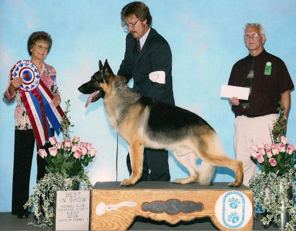 4X SEL MV CAN GV GCH Marquis Stealing The Show